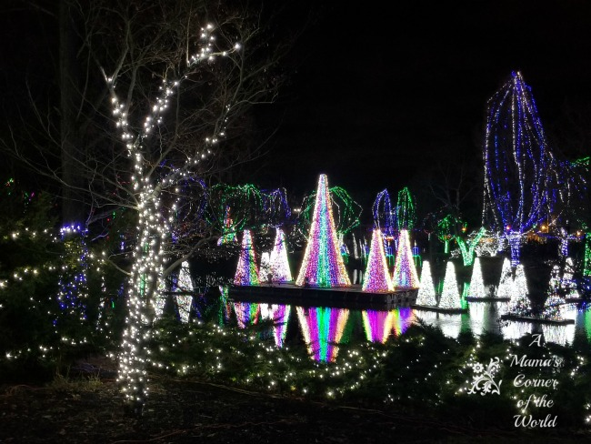What Are 7 Things You Should Know When Planning A Visit To Wildlights At  The Columbus Zoo U0026 Aquarium In Columbus, Ohio?