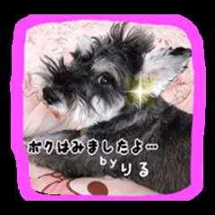 yurimero ANIMAL STAMP