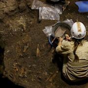 В Африке найдены останки человека, способные перевернуть представления ученых о Homo Sapiens