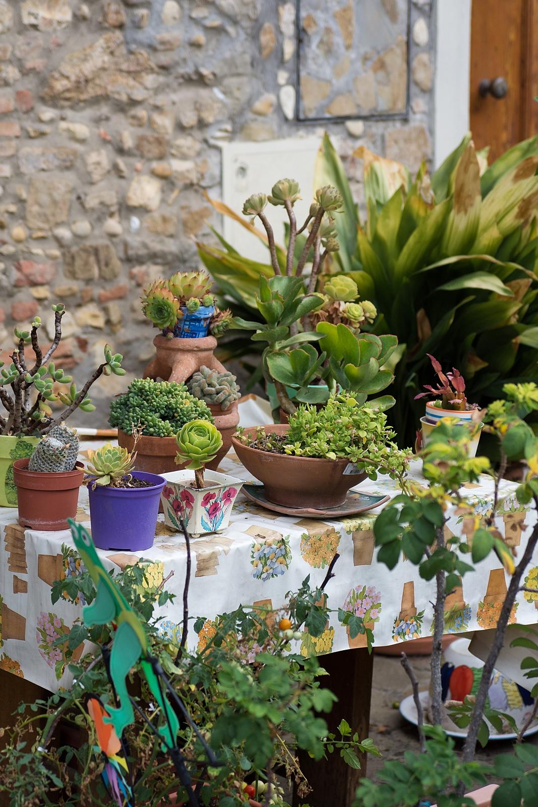 Blühender Hinterhof in der Toskana