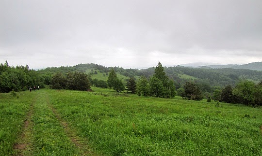 Widok z wierzchołka Łysej Góry w kierunku jej drugiej, niższej kulminacji.
