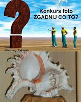 http://misiowyzakatek.blogspot.com/2014/09/zgadnij-co-to-czyli-zabawa-foto-cz-5.html