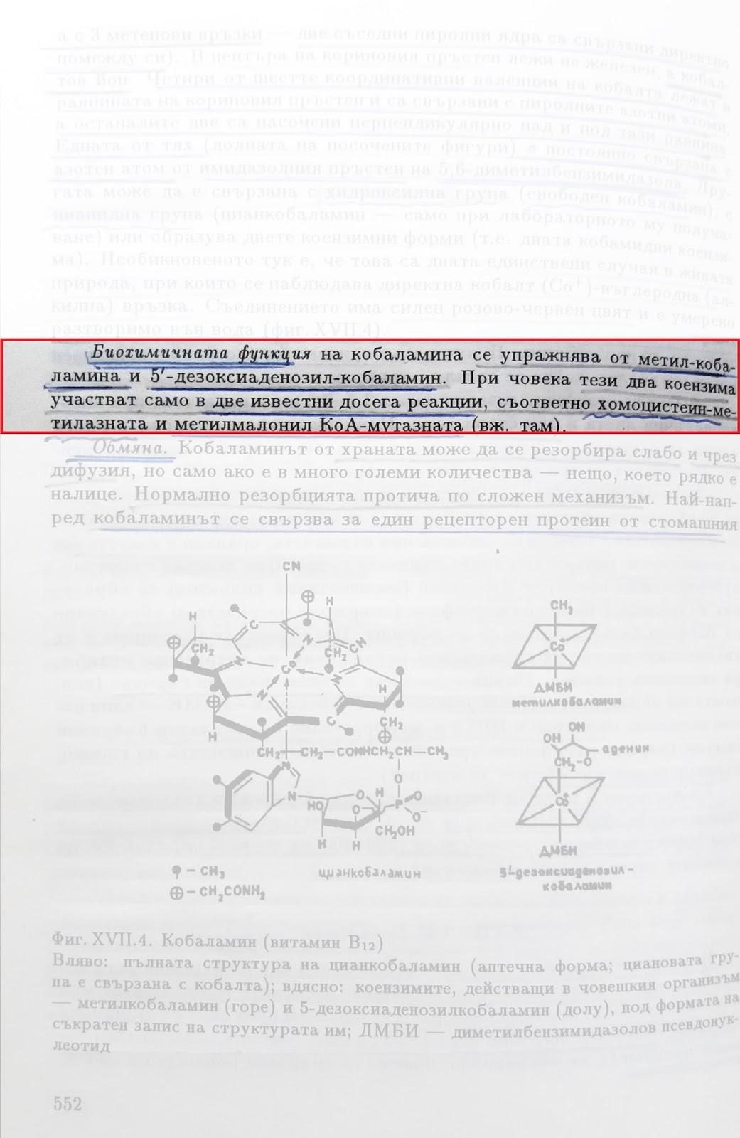 Учебник по биохимия стр.552