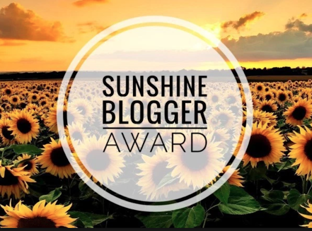 11 Things You Probably Didn't Know About Me: Sunshine Blogger Award - Taylor A Mead