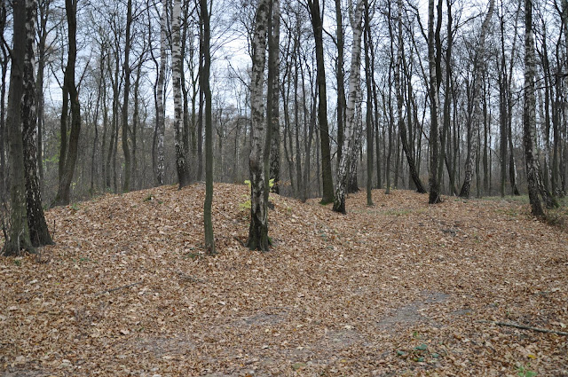 Wczesnośredniowieczne cmentarzysko kurhanowe w Kleczanowie