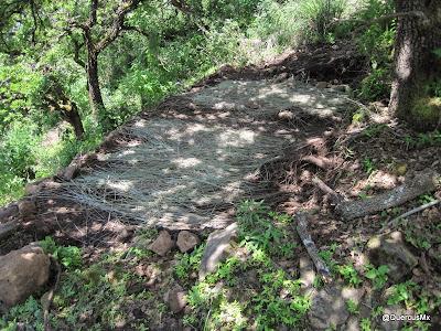 Lugar para acampar en la arista de la Sierra e Tecuán en su cruce son el Sendero del Indio