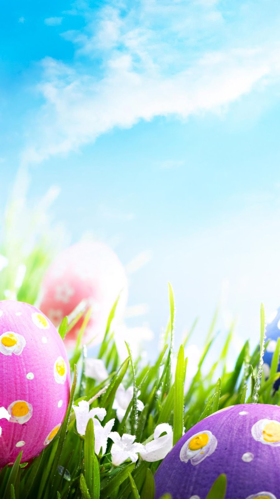 Easter iPhone Wallpapers (9)