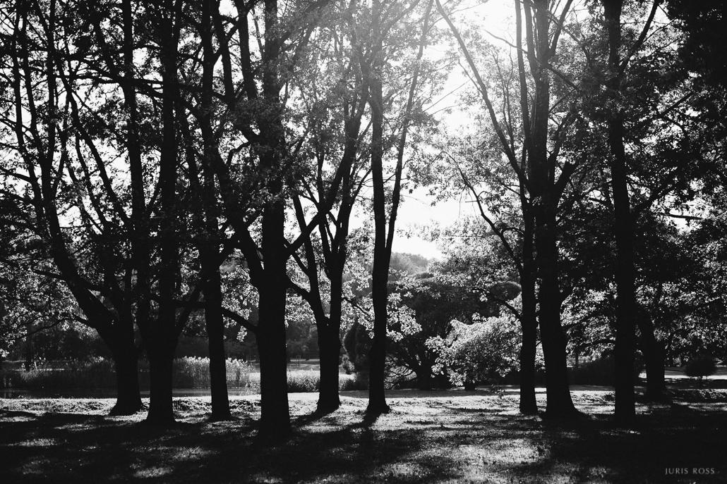 rīgas parki