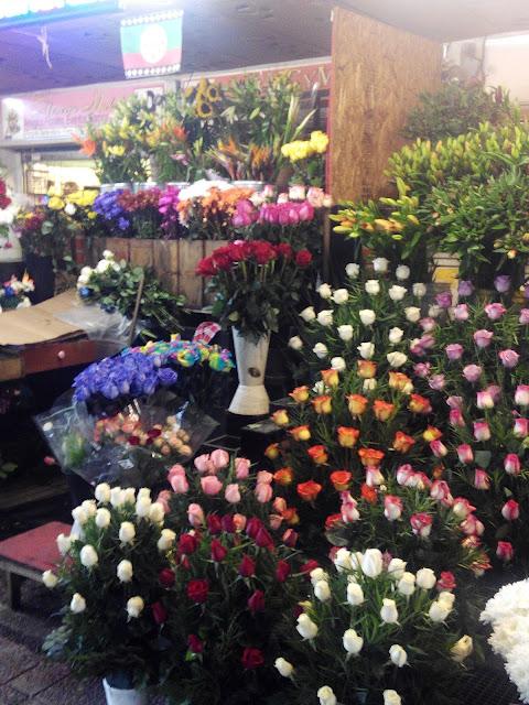 Pérgola de las Flores, Santiago de Chile