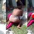 Woman Attacks Rival In Public Over Man In Lagos, Strips Her Naked.