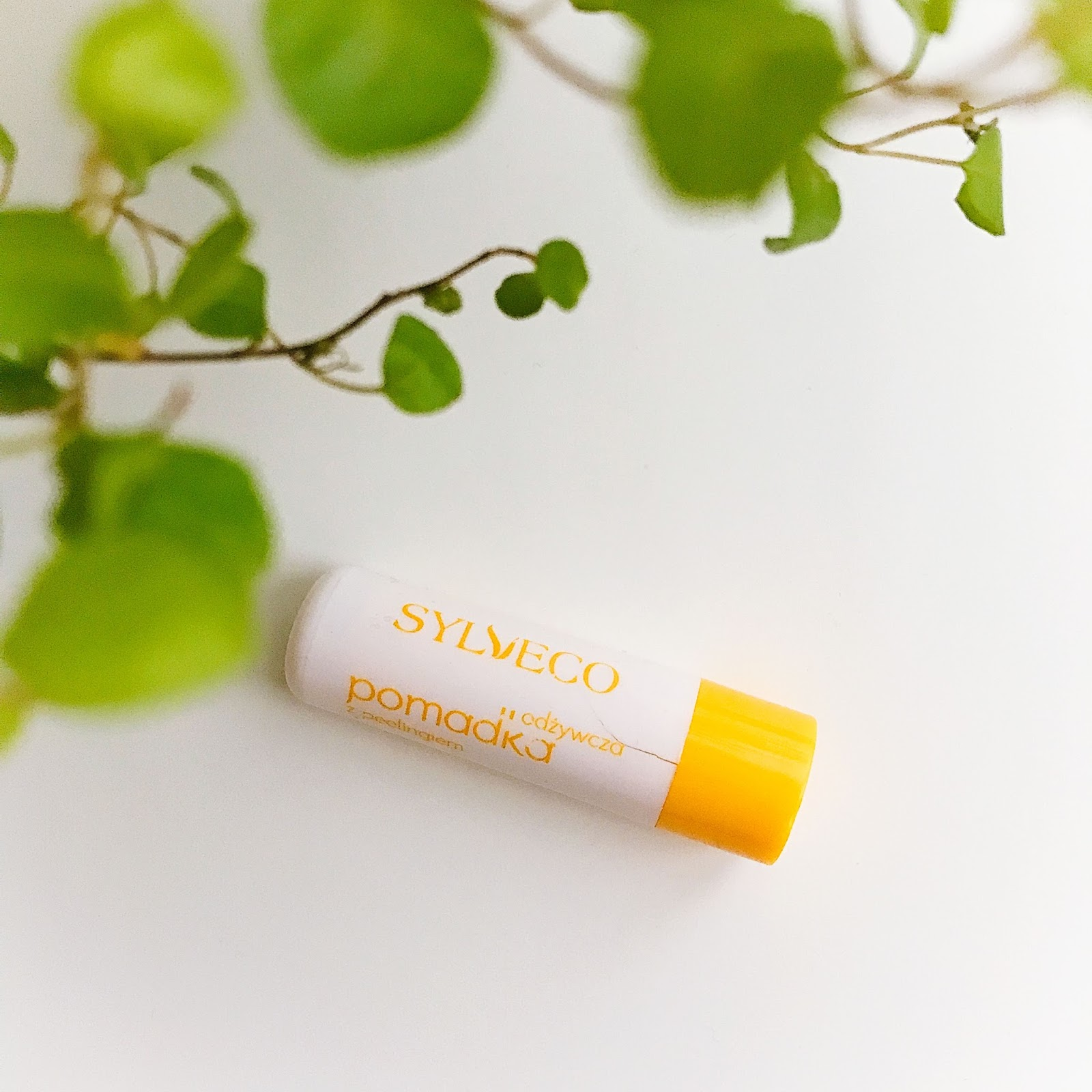 Produkty pielęgnacyjne do wrażliwych ust, Odżywcza pomadka z peelingiem Sylveco,