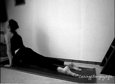 Chien tête en haut yoga