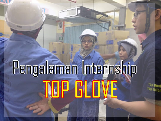 Pengalaman Internship di Top Glove