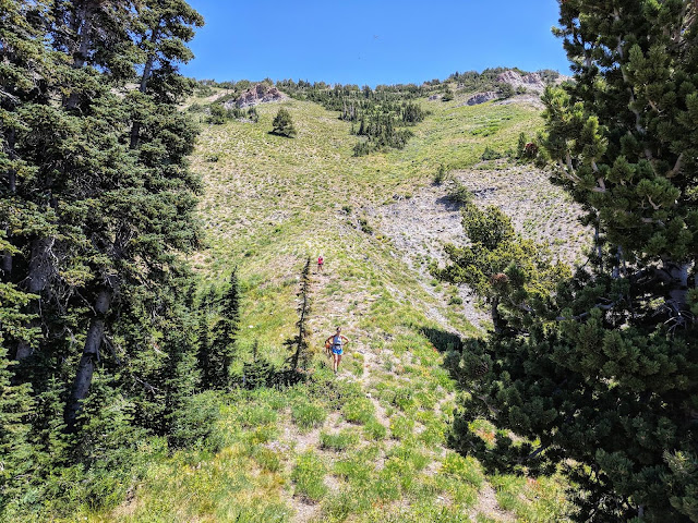 Hiking to Cascade Mountain, Hiking Hiking to Cascade Peak above Provo, Utah, Hiking the Wasatch 7 Peaks, Utah Peak Baggers, Wasatch Peak Baggers