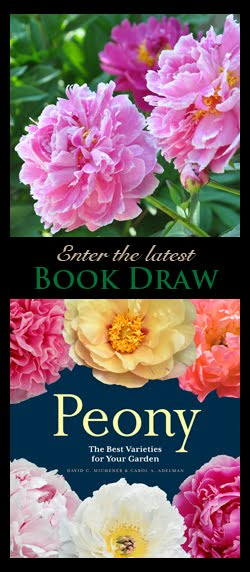 Enter the Latest Book Giveaway!