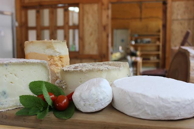 ביקור במחלבת גבינות