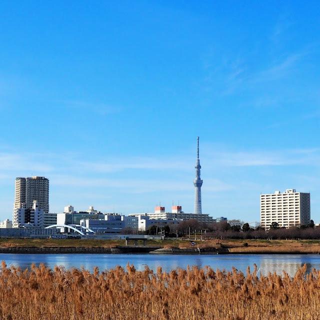 荒川自転車道 都営新宿線 スカイツリー