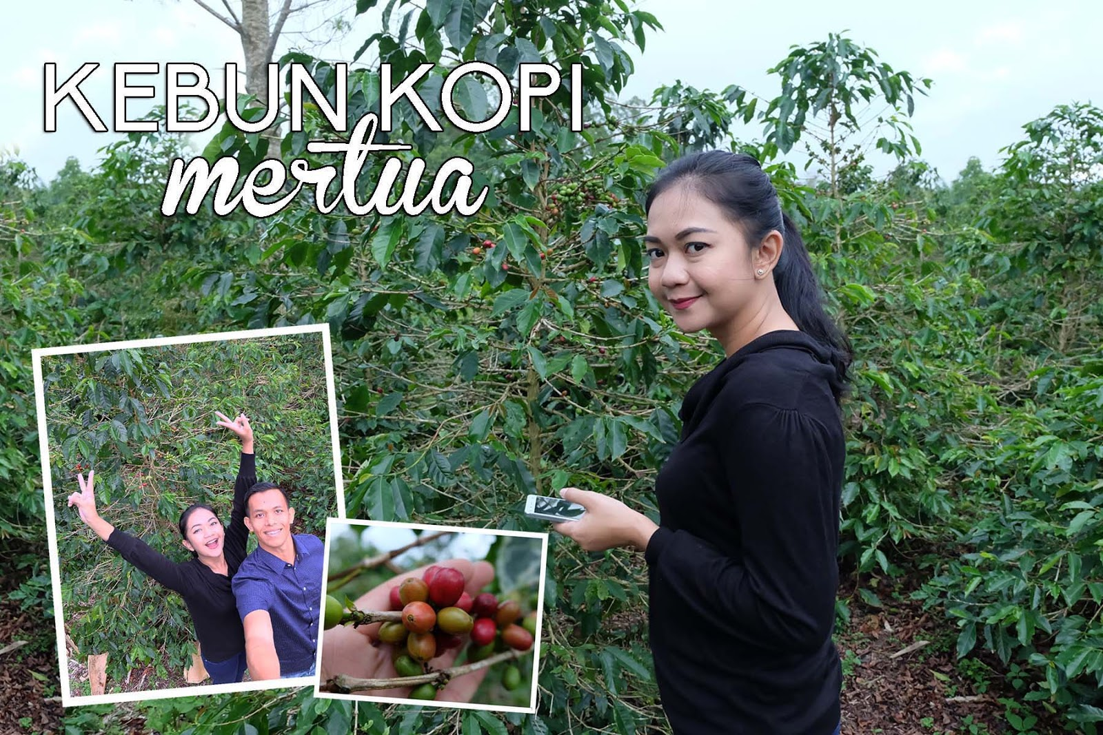 Wisata Kebun Kopi Di Bandung