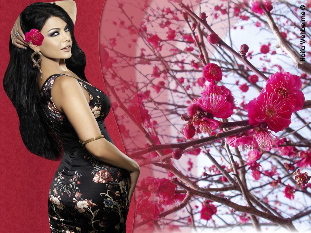 12 Haifa Wehbe Wallpapers-4648
