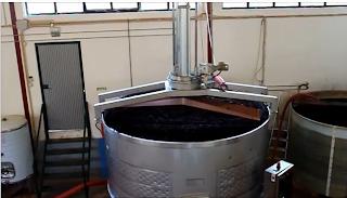 lagar produçao vinho processo