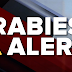 City of Amarillo warns public about recent rabies cases