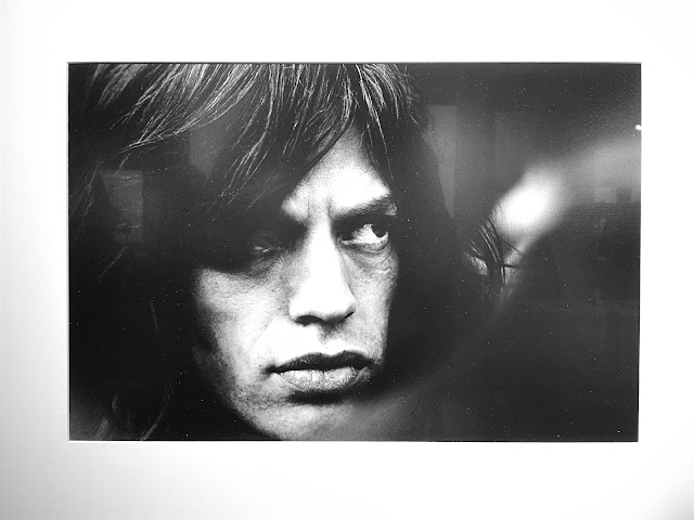 mick jagger door herman selleslags