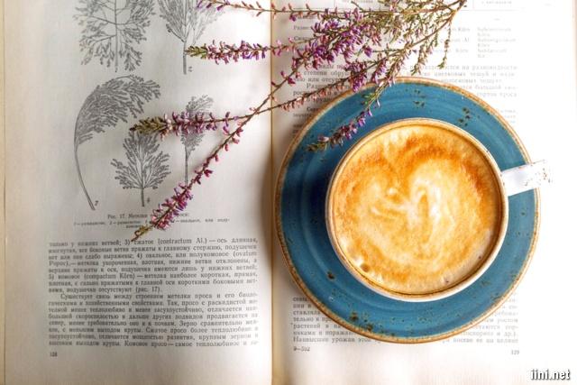 ảnh hoa, sách và ly cà phê