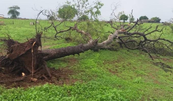 CHUVAS: Forte Chuva causa transtornos no município de São José dos Ramos.