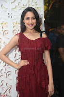 Pragya Jaiswal in Stunnign Deep neck Designer Maroon Dress at Nakshatram music launch ~ CelebesNext Celebrities Galleries 077.JPG