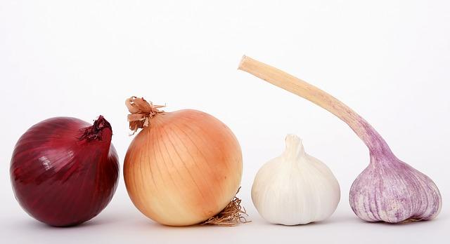 oignon, qualité, nutrition, recette, cuisine