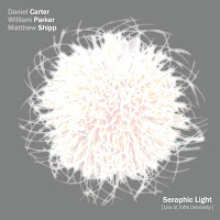 Daniel Carter, William Parker & Matthew Shipp - Seraphic Light