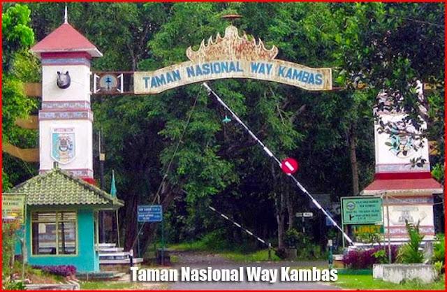 Foto Taman Nasional Way Kambas Bandar Lampung