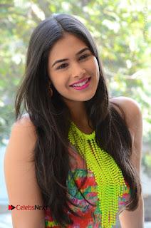 Telugu Actress Prasanna Stills in Short Dress at Inkenti Nuvve Cheppu Press Meet Stills  0005.JPG