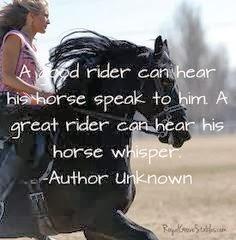 paarden spreuken Quotes4Everyone: Quotes about Horses paarden spreuken