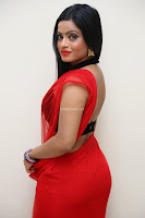 Aasma Syed in Red Saree Sleeveless Black Choli Spicy Pics ~  Exclusive Celebrities Galleries 057.jpg