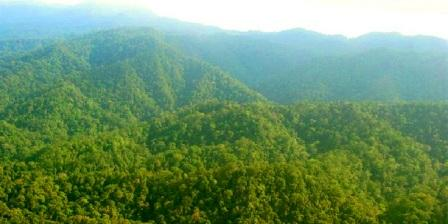 Wisata Alam Taman Nasional Bukit Tiga Puluh