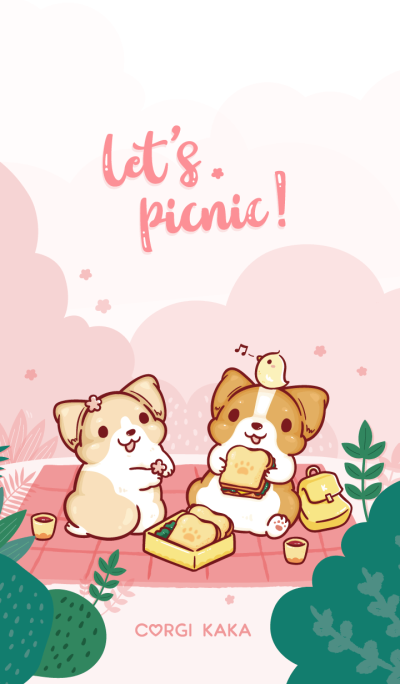 Corgi Dog KaKa - Let's picnic!