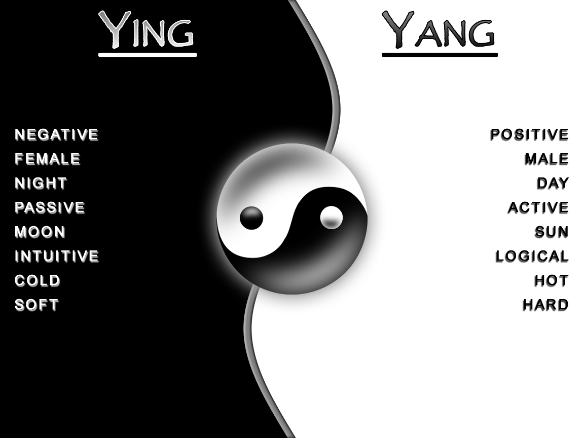 what is a yin and yang relationship