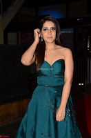 Raashi Khanna in Dark Green Sleeveless Strapless Deep neck Gown at 64th Jio Filmfare Awards South ~  Exclusive 053.JPG