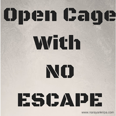 Text Image: Open Cage With No Escape