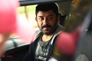 Jayam Ravi Arvind Swamy Hansika Motwani Bogan Movie Stills .COM 0014.jpg