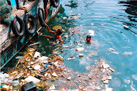 Ocean pollution starts from land