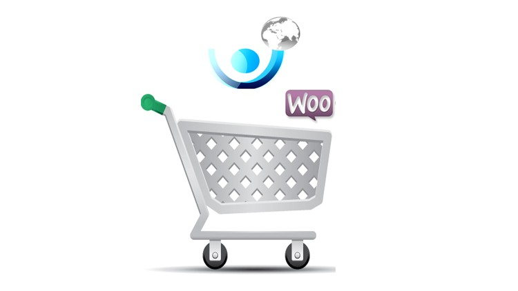 Coupon Build a Successful Ecommerce Wordpress site with proper SEO