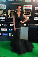Esha Gupta in a Deep Neck Sleeveless Dark Green Gown at IIFA Utsavam Awards 2017     05.JPG