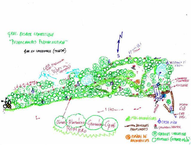 Diseño en España de Bosques Comestibles