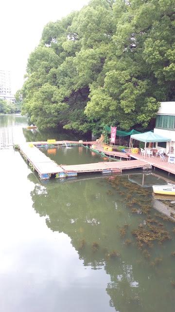 赤坂見附外濠魚釣り