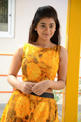 Yamini Bhaskar at Titanic movie press meet-thumbnail-3