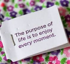 beautiful quotes on life for friendship: the purpose of life is to enjoy every moment.
