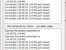 Source Kode Delphi Multi Plink Auto Reconnect