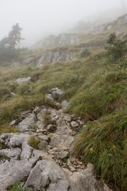 Wanderung von der Hintereggeralm bei Liezen zum Nazogl, Angerkogel und Kosennspitz. - Nebel Landschaft